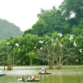 bird watching in Thung nham